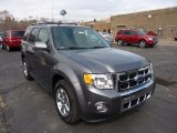 2011 Sterling Grey Metallic Ford Escape Limited V6 4WD #47005381