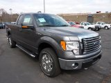 2011 Sterling Grey Metallic Ford F150 XLT SuperCab 4x4 #47005384