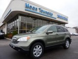 2009 Green Tea Metallic Honda CR-V EX-L 4WD #47112898