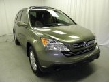 2009 Green Tea Metallic Honda CR-V EX-L #47113134