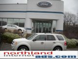 2009 Light Sage Metallic Ford Escape XLT V6 4WD #47112693