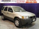2003 Gold Ash Metallic Ford Escape XLS V6 #47157441