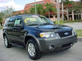 2006 Black Ford Escape XLT V6 #4688691