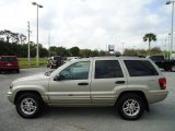2004 Jeep Grand Cherokee Light Pewter Metallic