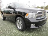 2009 Dodge Ram 1500 Sport Quad Cab Data, Info and Specs