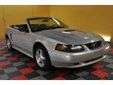 2001 Silver Metallic Ford Mustang V6 Convertible #47292375