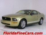 2006 Legend Lime Metallic Ford Mustang V6 Premium Coupe #441443