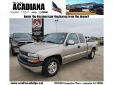 2002 Light Pewter Metallic Chevrolet Silverado 1500 LS Extended Cab #47350710