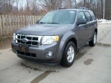 2011 Sterling Grey Metallic Ford Escape XLT V6 4WD #47351094