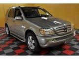 2005 Pewter Metallic Mercedes-Benz ML 350 4Matic #47402352