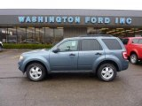 2010 Steel Blue Metallic Ford Escape XLT V6 4WD #47445372