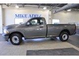 2011 Mineral Gray Metallic Dodge Ram 1500 ST Regular Cab #47499000