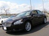 2010 Crimson Black Nissan Maxima 3.5 SV Premium #47499288