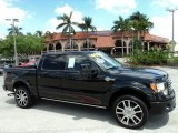 2010 Tuxedo Black Ford F150 Harley-Davidson SuperCrew 4x4 #47539105