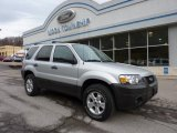 2006 Silver Metallic Ford Escape XLT V6 4WD #47539252