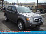 2011 Sterling Grey Metallic Ford Escape XLT 4WD #47539174