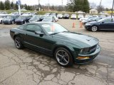 2008 Ford Mustang Bullitt Coupe Data, Info and Specs