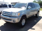 2005 Silver Sky Metallic Toyota Tundra SR5 Double Cab #47584846