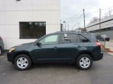 2010 Black Forest Pearl Toyota RAV4 I4 4WD #47584975
