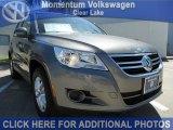 2011 Alpine Gray Metallic Volkswagen Tiguan S #47636459