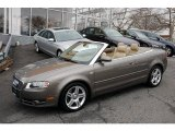 Alpaka Beige Metallic Audi A4 in 2008