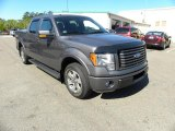 2010 Sterling Grey Metallic Ford F150 FX2 SuperCrew #47705096