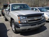 2005 Silver Birch Metallic Chevrolet Silverado 1500 Regular Cab 4x4 #47704735