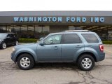 2010 Steel Blue Metallic Ford Escape Limited V6 4WD #47767302