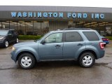 2010 Steel Blue Metallic Ford Escape XLT 4WD #47767303