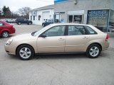 2005 Light Driftwood Metallic Chevrolet Malibu Maxx LS Wagon #47831151