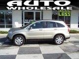 2009 Borrego Beige Metallic Honda CR-V EX-L #47858646