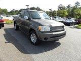 2005 Phantom Gray Pearl Toyota Tundra SR5 Double Cab #47866908