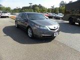 2009 Palladium Metallic Acura TL 3.5 #47866914