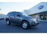 2011 Sterling Grey Metallic Ford Escape XLT V6 4WD #47905926