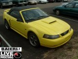 Zinc Yellow Ford Mustang in 2002