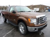 2011 Golden Bronze Metallic Ford F150 XLT SuperCab 4x4 #47905889