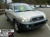 2004 Pewter Hyundai Santa Fe LX 4WD #48025224