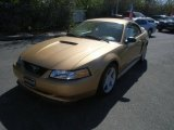 2000 Sunburst Gold Metallic Ford Mustang GT Coupe #48026009