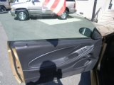 2000 Ford Mustang GT Coupe Door Panel