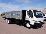 Chevrolet W Series Truck 2006 Data, Info and Specs