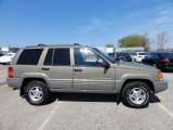 1998 Jeep Grand Cherokee Char Gold Satin Glow