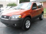 2006 Blazing Copper Metallic Ford Escape XLT V6 4WD #48025679