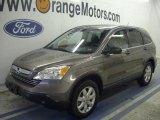 2009 Urban Titanium Metallic Honda CR-V EX 4WD #48099710