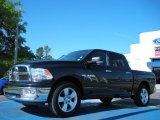 2009 Brilliant Black Crystal Pearl Dodge Ram 1500 Big Horn Edition Crew Cab #48099531