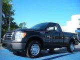 2010 Tuxedo Black Ford F150 XL Regular Cab #48099532