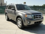 2011 Sterling Grey Metallic Ford Escape XLT #48099737