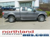 2011 Sterling Grey Metallic Ford F150 XLT SuperCab 4x4 #48099399