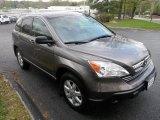 2009 Urban Titanium Metallic Honda CR-V EX #48100070