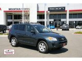 2010 Black Forest Pearl Toyota RAV4 I4 4WD #48167856