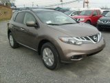 2011 Nissan Murano SL AWD Data, Info and Specs